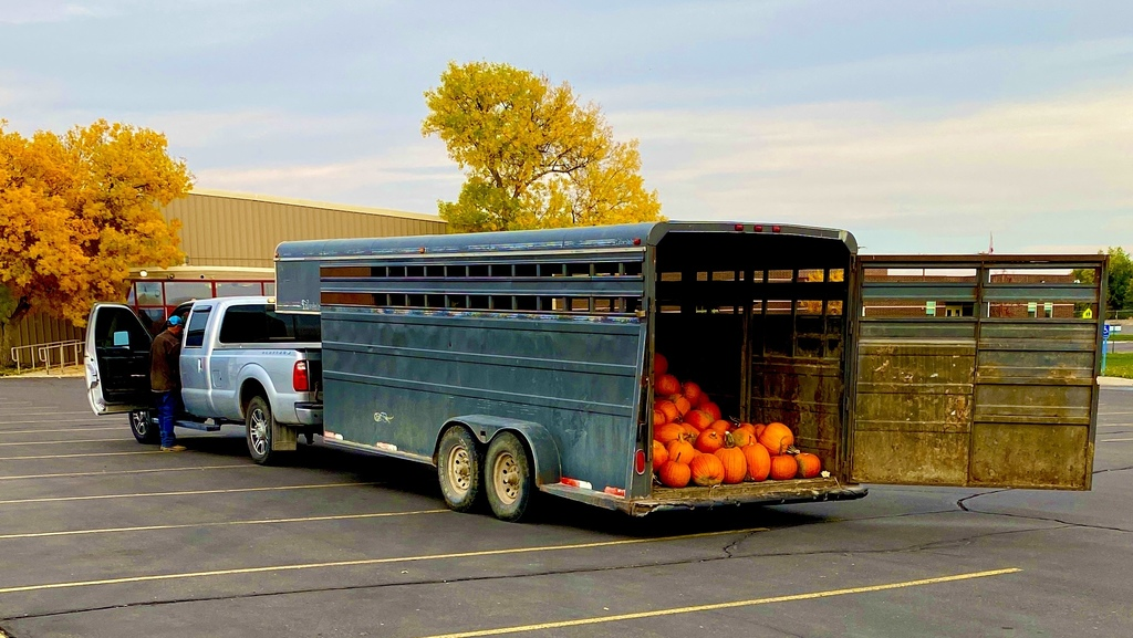 Horse trailer from the Pumpkin Patch delivering pumpkins